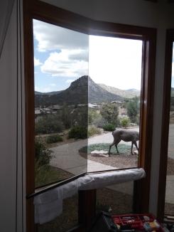Vista Residential Window Tint